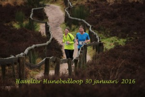 Havelter Hunebedloop
